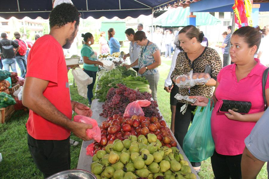 Feria Agricola
